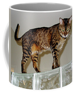 Coffee Mug featuring the photograph Tora On Glass II by Phyllis Kaltenbach