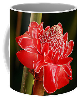 Torch Ginger Coffee Mug