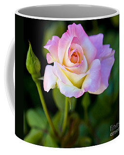 Coffee Mug featuring the photograph Rose-touch Me Softly by David Millenheft