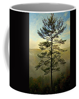 Coffee Mug featuring the photograph Towering Pine by Suzanne Stout