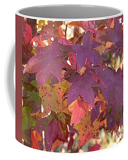 Coffee Mug featuring the photograph Traces Of Fall by Andrea Anderegg