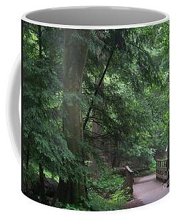 Trail To Ash Cave Coffee Mug