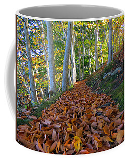 Coffee Mug featuring the photograph Trailblazing by Dianne Cowen