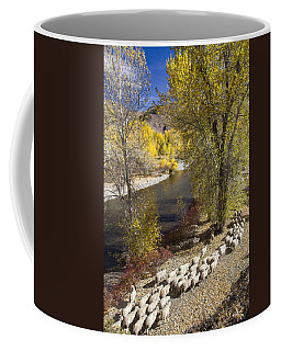 Trailing Of The Shep Coffee Mug