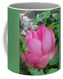 Tranquil Lotus  Coffee Mug