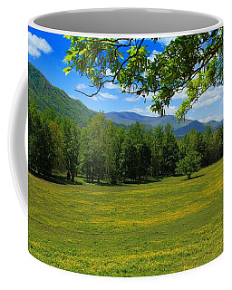 Coffee Mug featuring the photograph Tranquility by Geraldine DeBoer