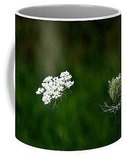 Coffee Mug featuring the photograph Transformation  by Ramabhadran Thirupattur