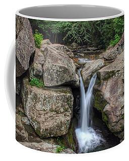 Trash Can Falls Coffee Mug