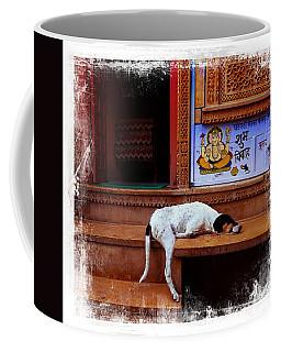 Travel Sleepy Happy Doggie Jaisalmer Fort India Rajasthan Coffee Mug