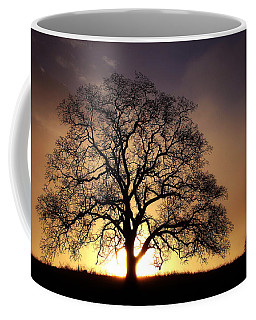 Tree At Sunrise In The Fog Coffee Mug