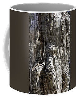 Tree Bark No. 3 Coffee Mug by Lynn Palmer