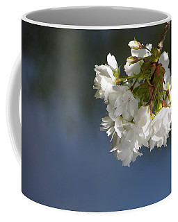 Coffee Mug featuring the photograph Tree Blossoms by Marilyn Wilson