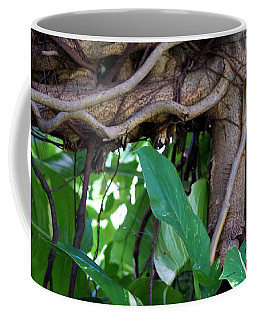 Coffee Mug featuring the photograph Tree Branch by Rafael Salazar