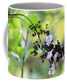 Coffee Mug featuring the photograph Tree Filigree by Deborah  Crew-Johnson