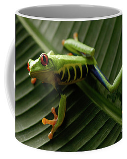 Tree Frog 16 Coffee Mug by Bob Christopher