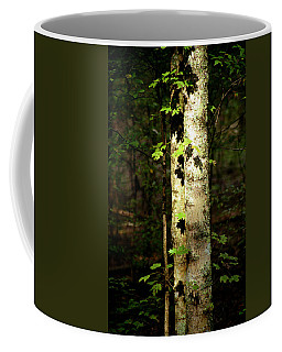 Tree In The Woods Coffee Mug by Pamela Critchlow