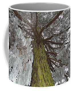 Coffee Mug featuring the photograph Tree In Winter by Felicia Tica