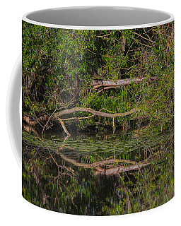 Coffee Mug featuring the photograph Tree Mirroring In Water by Leif Sohlman