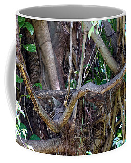 Coffee Mug featuring the photograph Tree by Rafael Salazar