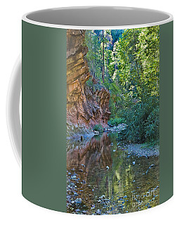 Coffee Mug featuring the photograph Tree Reflection by Mae Wertz