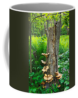 Coffee Mug featuring the photograph Tree Remnant by Lars Lentz