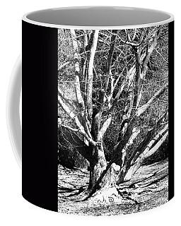 Tree Study In Black N White Coffee Mug