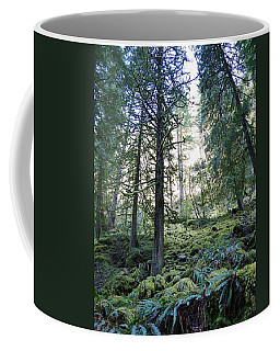 Coffee Mug featuring the photograph Treequility by Athena Mckinzie