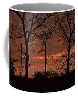 Trees At Sunrise Coffee Mug