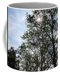 Trees At The Park Coffee Mug by Laurel Powell