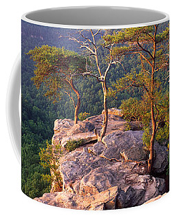 Trees On A Mountain, Buzzards Roost Coffee Mug