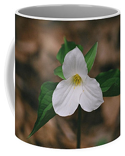 Coffee Mug featuring the photograph Trillium by David Porteus