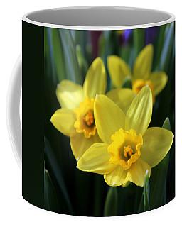 Trio Of Daffodils Coffee Mug by Joseph Skompski