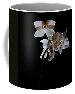 Coffee Mug featuring the photograph Triplets II Color by Ron White