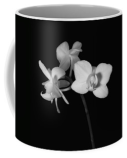 Coffee Mug featuring the photograph Triplets by Ron White
