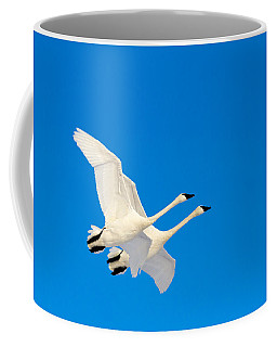 Triumphant Coffee Mug