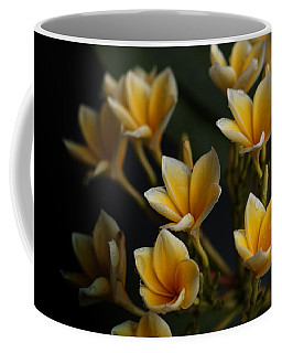 Coffee Mug featuring the photograph Tropic Welcome by Miguel Winterpacht