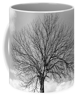 Tropic Winter Coffee Mug