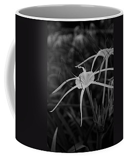 Coffee Mug featuring the photograph Tropical Paradise by Miguel Winterpacht