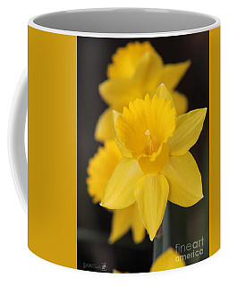 Trumpet Daffodil Named Exception Coffee Mug