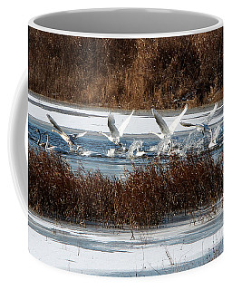 Coffee Mug featuring the photograph Trumpeter Swans by John Freidenberg