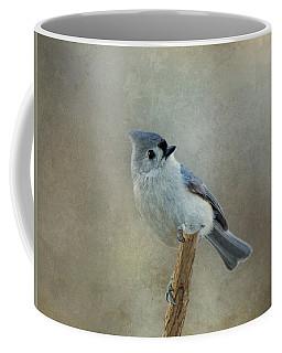 Tufted Titmouse Watching Coffee Mug