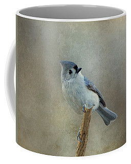 Tufted Titmouse Watching Coffee Mug