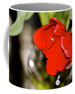 Tuips In Red Study 5 Coffee Mug by Cathy Dee Janes