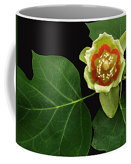 Tulip Bloom Coffee Mug