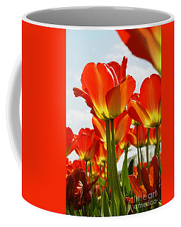 Tulip Field 1 Coffee Mug by Rudi Prott