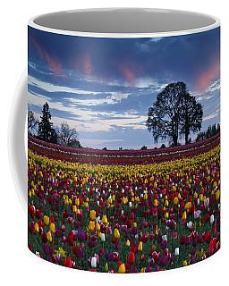 Tulip Field's Last Colors Coffee Mug