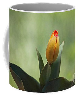 Coffee Mug featuring the photograph New Beginning by Lisa L Silva