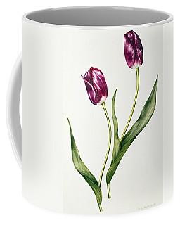 Tulip Negrita Coffee Mug