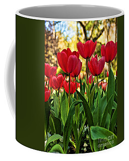 Tulip Time Coffee Mug by Peggy Hughes