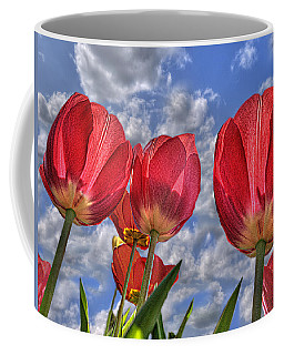 Tulips Are Better Than One Coffee Mug